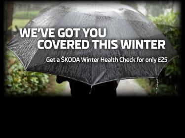 Skoda Winter Check
