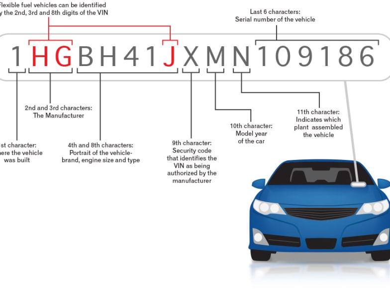 Model Year, Build & Compliance Date Explained | Motorama