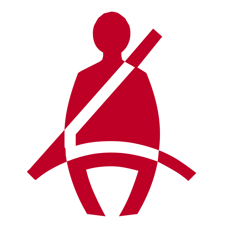 Passenger Seat Belt Light On With No Passenger