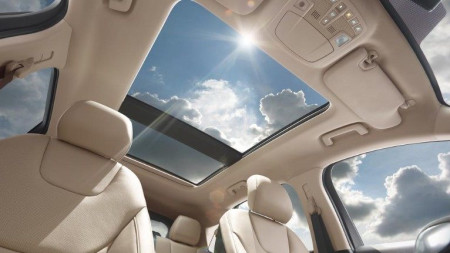 New Ford Edge Pan Roof