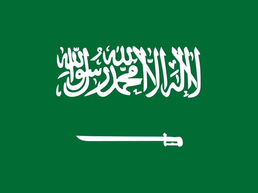 saudi_arabia_flag_medium.png (889×667)
